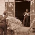 Azienda Agricola Le Sodere (39)