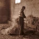 Azienda Agricola Le Sodere (35)