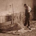 Azienda Agricola Le Sodere (37)