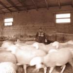 Azienda Agricola Le Sodere (41)